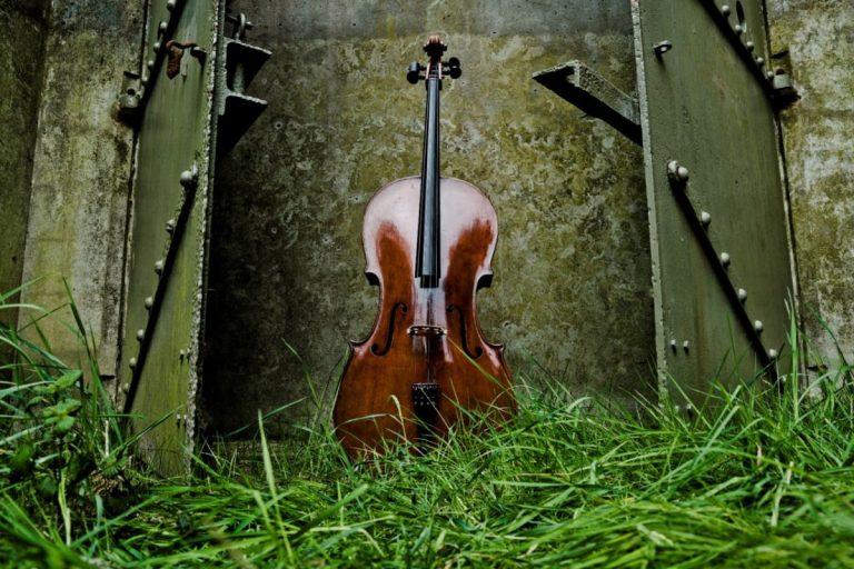 Natuur en muziek tijdens Kamermuziekfestival bij Natuurmonumenten