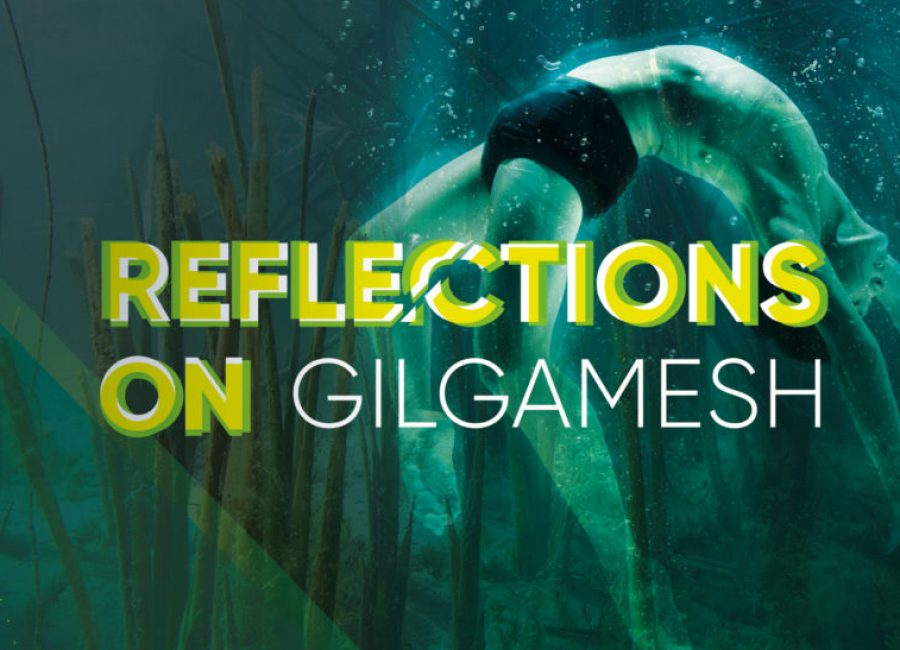 BrabantKoort_header_ReflectionsOn_Gilgamesh_1
